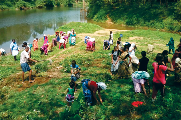 Cleaning campaign and planting of Saplings